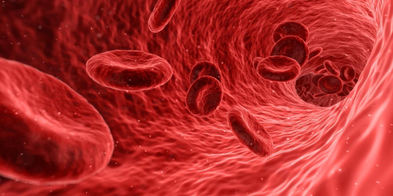 Mieloma Múltiple, un cáncer de sangre más común de lo que parece