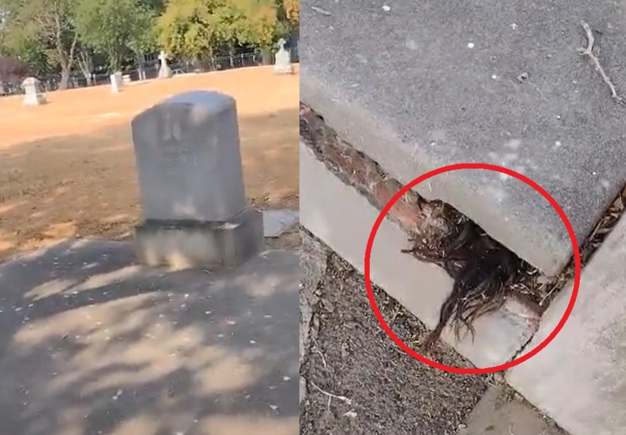 Hombre descubre cabello humano saliendo de una tumba