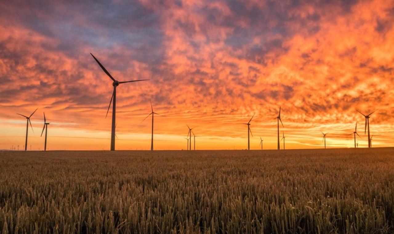 Twitter y HP se comprometen a la neutralidad carbónica para 2024