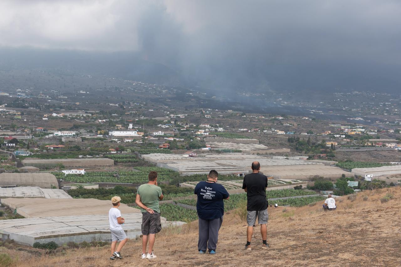 Lava del volcán de La Palma avanza a cuatro metros por hora